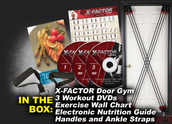 Weider X-Factor Door Gym System